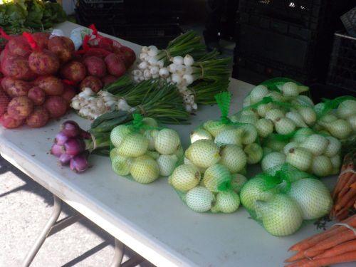 Onions at Farmer's Market